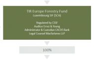 Unipol, Inarcassa ed Eppi investono nelle foreste con il fondo Timberland