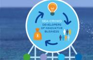 Gruppo Cividini entra nel capitale della piattaforma Sea Crowd