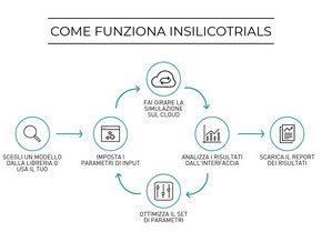 InSilico 1.jpg