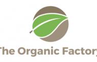 Concordato preventivo per The Organic Factory. Finplace vorrebbe rilevarla