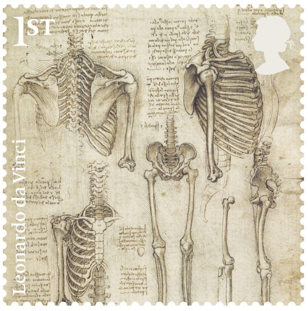Leonardo-The-Skeleton-stamp-400-1014x1024