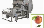 Gli americani di Gulftech comprano i macchinari per lavorazione della frutta ABL