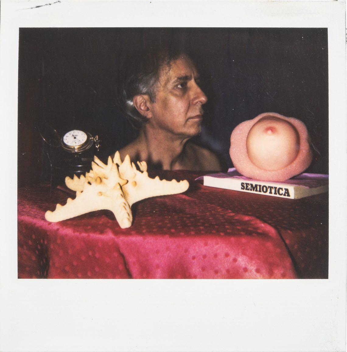 Semiopatella, 1989