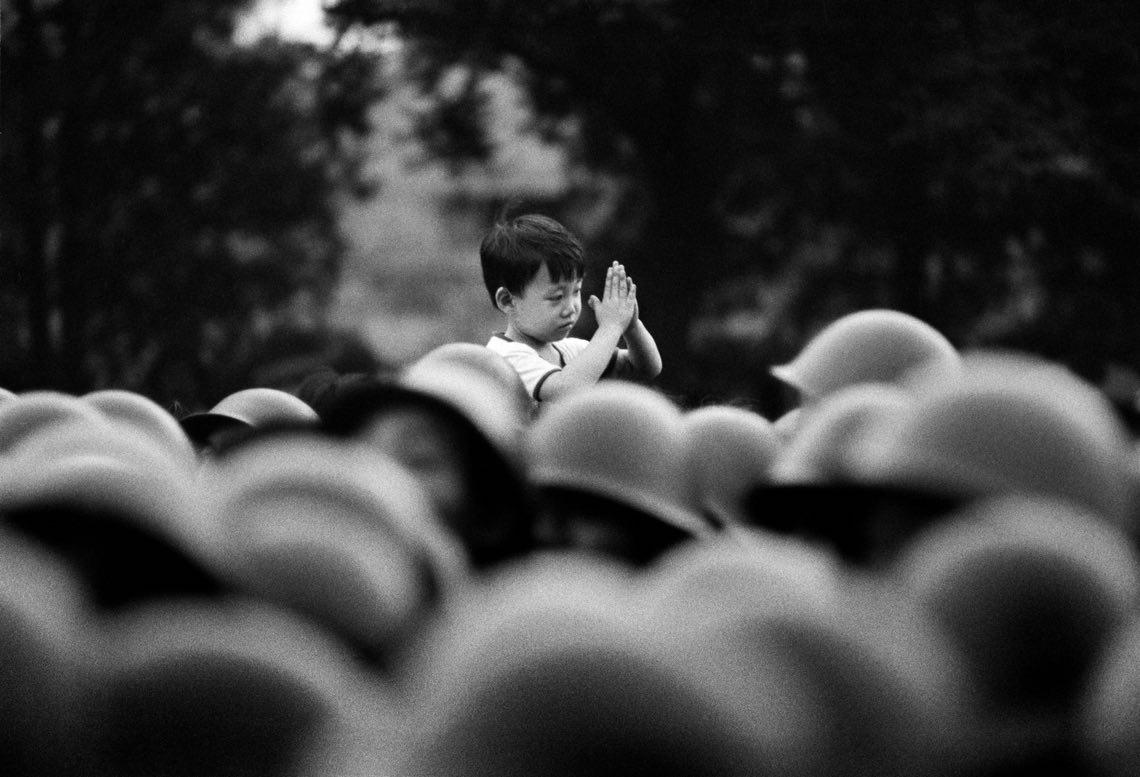 18©Dario Mitidieri