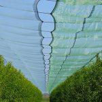 arrigoni_reti_agricoltura