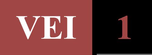 vei-1-logo