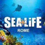 sea life roma
