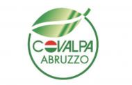 Gruppo Iccrea e Cdp erogano finanziamento da 37,8 mln euro alla filiera della patata e ortaggi
