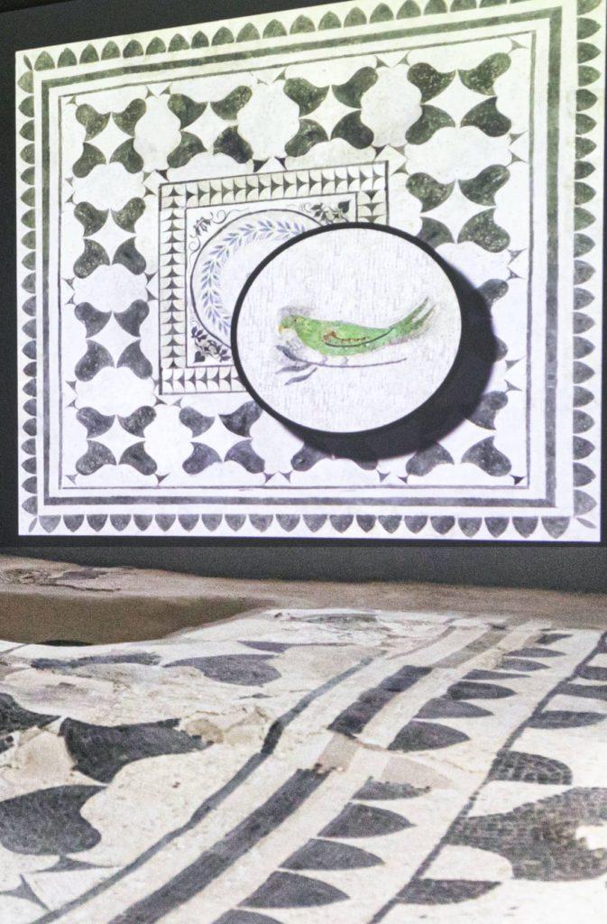 allestimento multimediale - mosaici