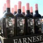 Farnese vini private equity