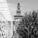 Italian-MA-Forum_Website-image_V1_VC
